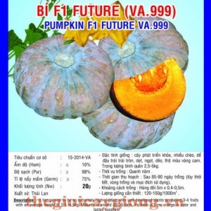 bi f1 future va999