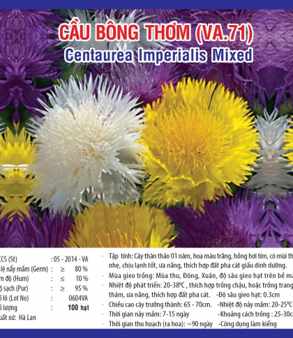cau bong thom va71