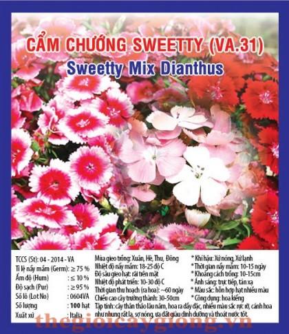 hoa cam chuong sweetty va31