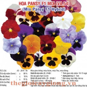 hoa pansy mix f1 va54