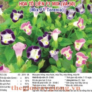 hoa to lien va50