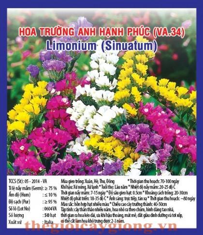 hoa truong anh hanh phuc va34