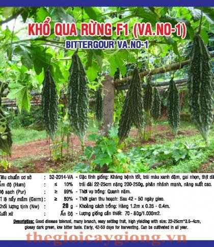 kho qua rung f1 vano1