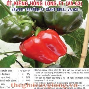 ot kieng hong long va63