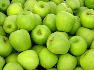 Giống cây táo lai lê Đài Loan