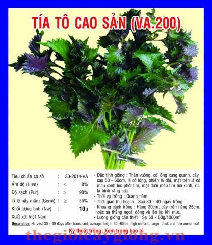 tia to cao san va200