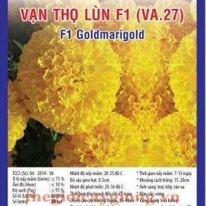 van tho lun f1 va27