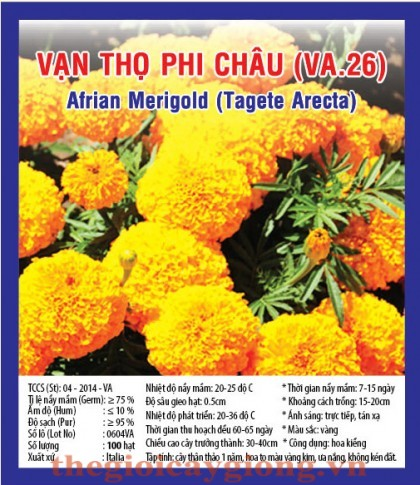 van tho phi chau va26